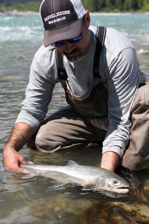 Pitt River Bull trout