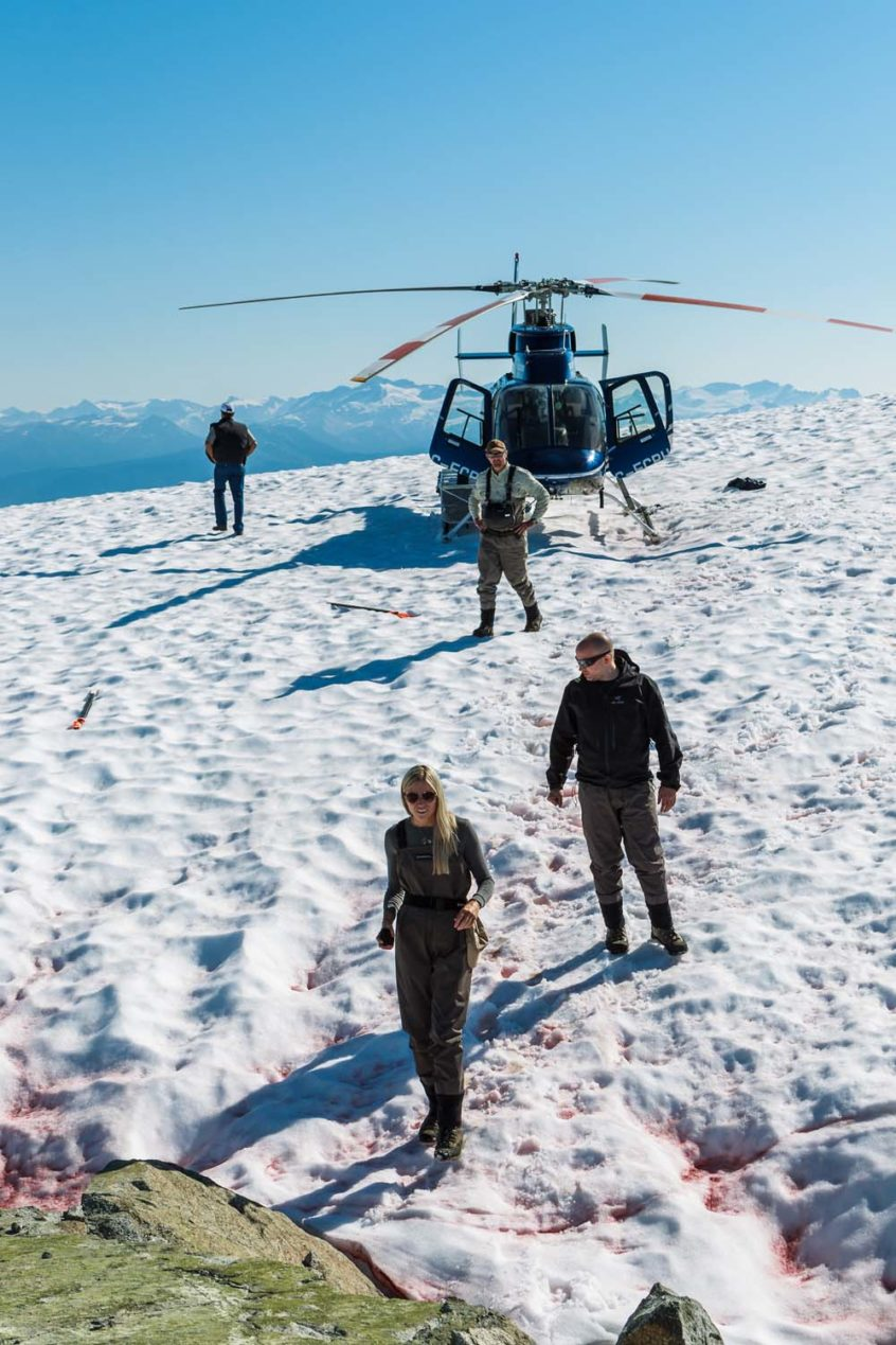 Landing on a Glacier