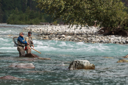 whistler fly fishing for bull trout