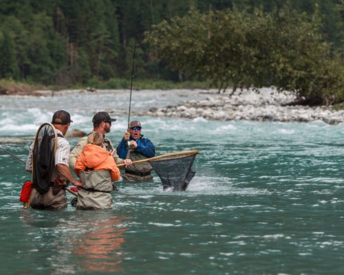 Guide nets a bull trout near Whistler BC