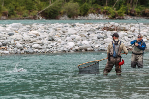 big bull trout bending a fly rod
