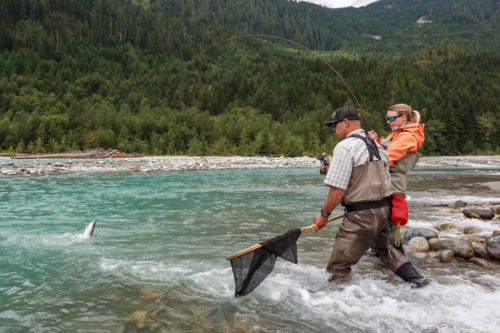 Guide Preparing to net a bull trout